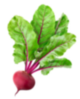 beetroot-isolated-white-with-clipping-pa