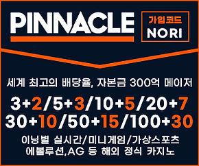 피나클-300-X-250-노리폴리스-코드-nori.jpg
