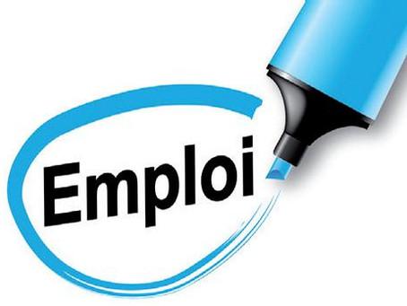 #22 Question écrite - L'insertion dans l'emploi des 50 ans et plus