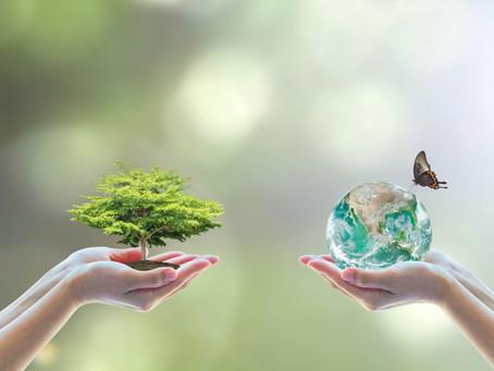 #17 Courrier - Parole de collégiens: la préservation de l'environnement