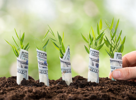 How to create an enabling environment for funding early-stage businesses