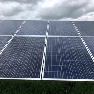 lichen removal solar farm uk