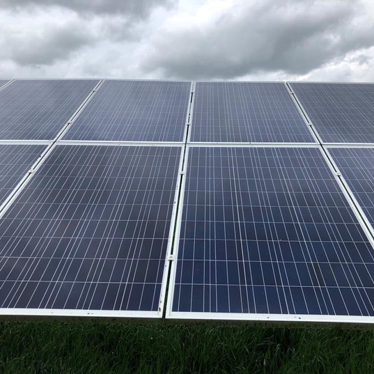 lichen removal solar farm uk