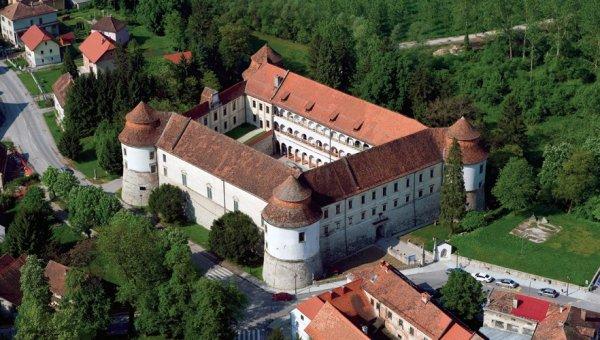 Замок Брежице