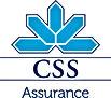 css_logo_f_public.jpg