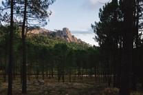 CorsicaPortfolio_HD_048.jpg