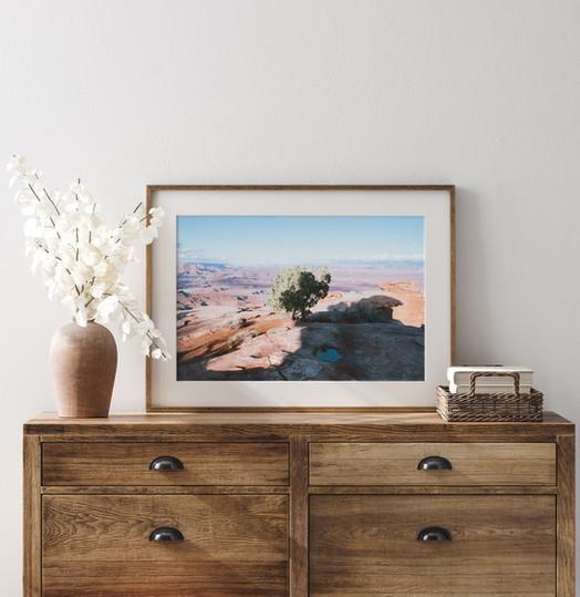 CanyonlandNPUSA2018_scene-01.jpg