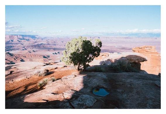 CanyonlandNPUSA2018_marges.jpg