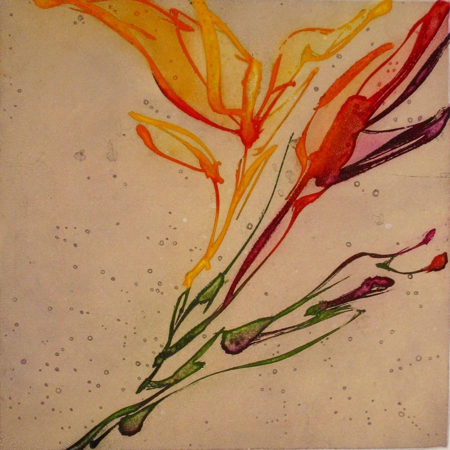 Floris 47  Richard Lacroix