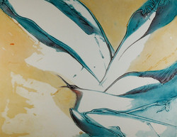 Hirondelle - Richard lacroix