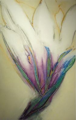 Magnolia II-Richard lacroix