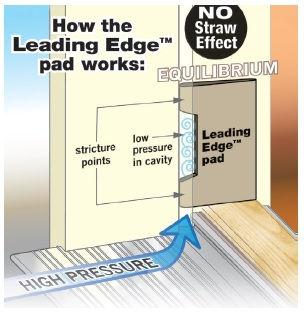 leading edge 2.jpg