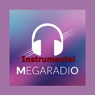 instrumental.png