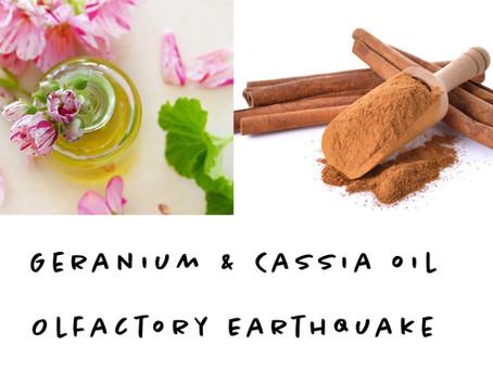 Olfactory Earthquake