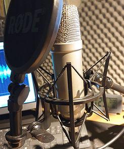 Hörbuch selbst sprechen
