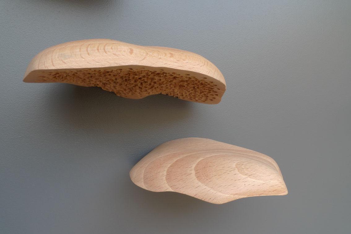 Cyprien Chabert - Fistulines - 2012