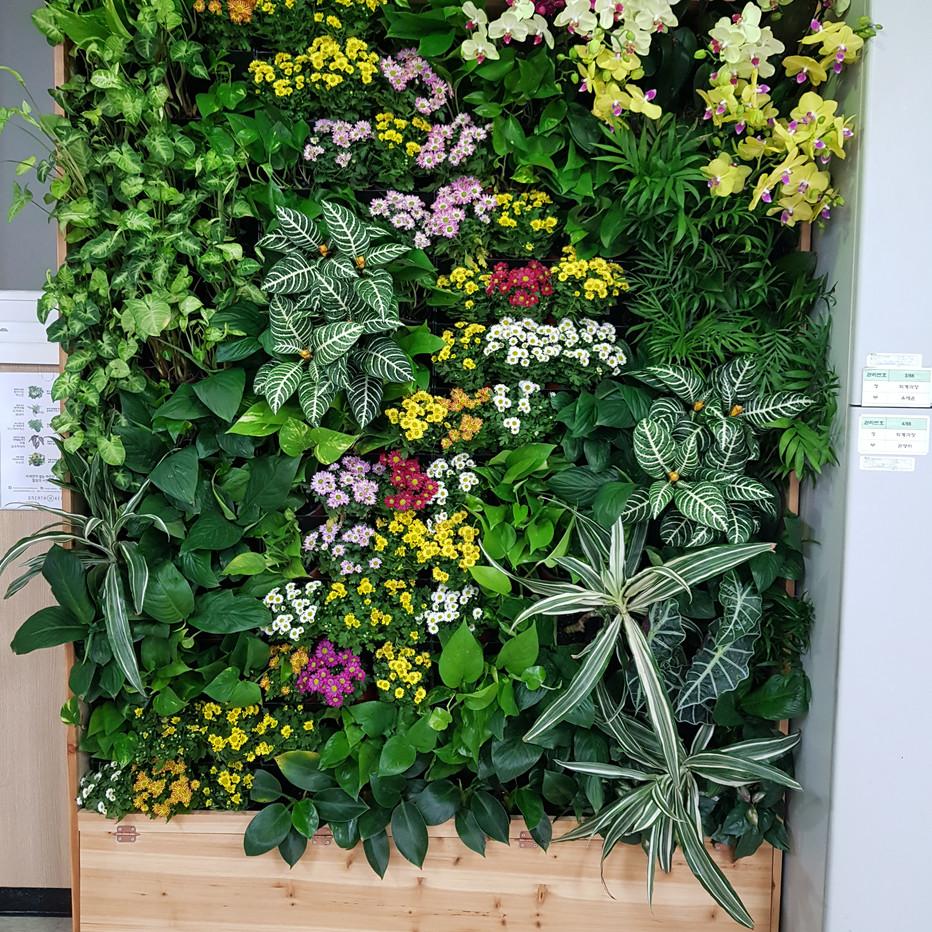 안양시청 4층 회계과 사무실 꽃교체