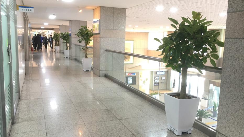 안양시청 2층