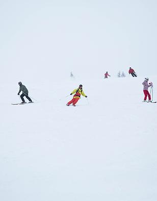Deporte de invierno