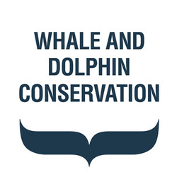 whale-and-dolphin-conservation-5b84413a2