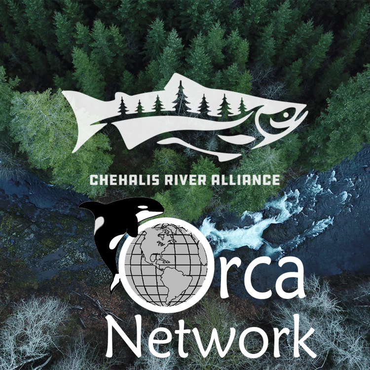 Advocacy Letter Writing for Change - Chehalis Dam