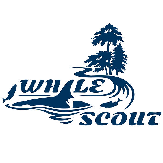 Whale Scout Volunteer Habitat Restoration Event