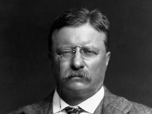THEODORE ROOSEVELT'S TAKE ON TROLLS