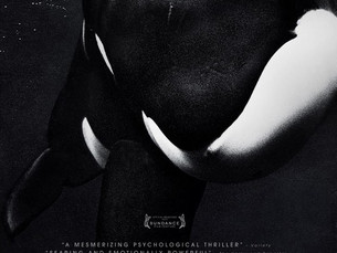 Animal intelligence, science fiction, and the shocking new documentary BLACKFISH