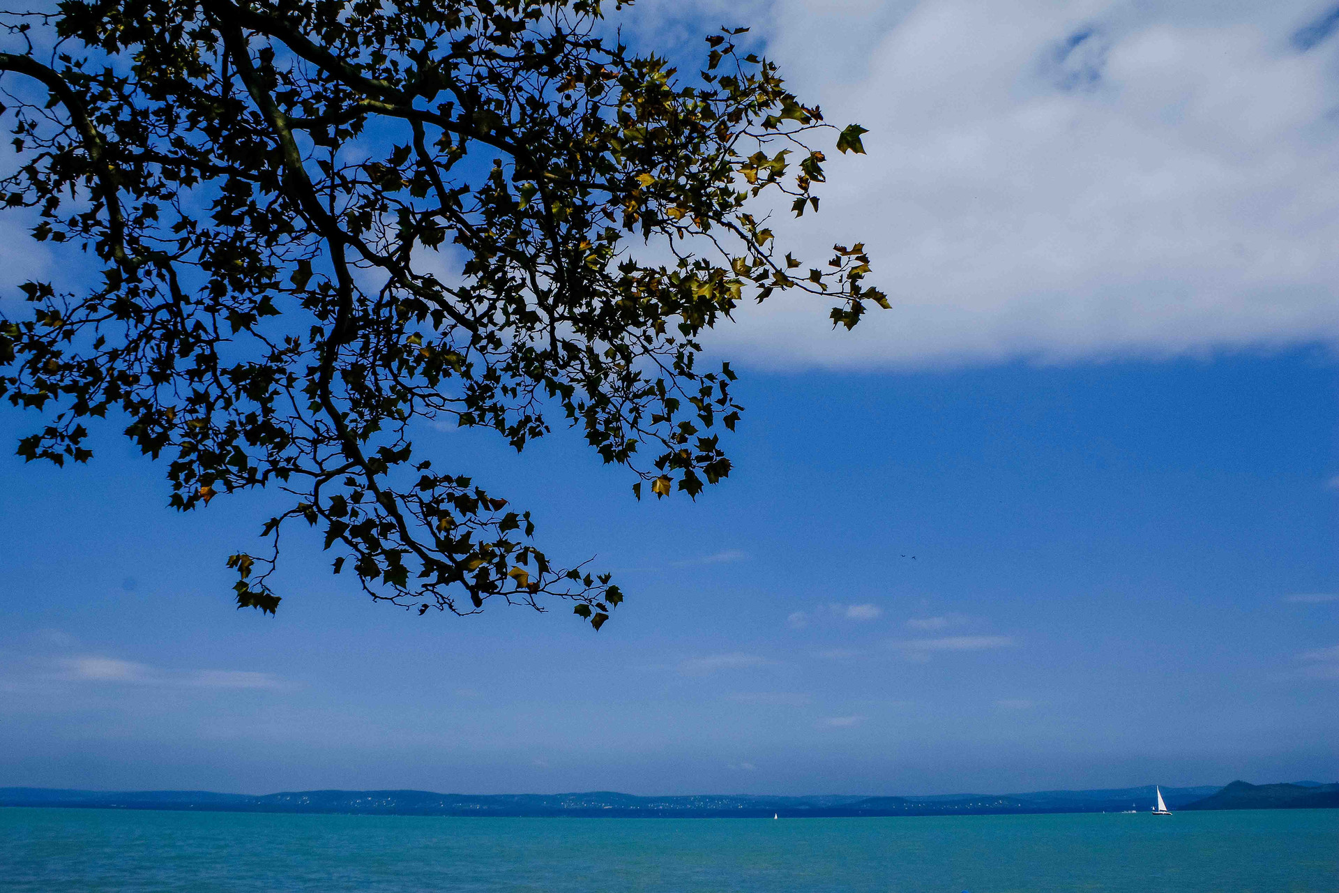 Lake Balaton Weddings6.JPG