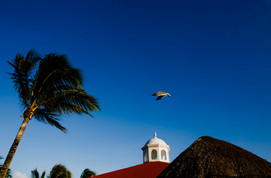 Wedding Playa del Carmen47.JPG
