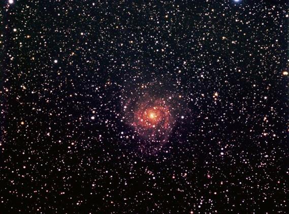 IC 342 (Caldwell 5)