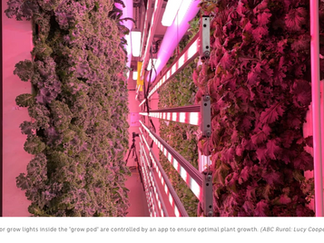 AUSTRALIA - VIDEO: Shipping Container Farm Teaching TAFE Students More Than Just Agriculture