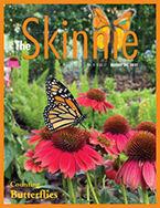 Skinnie_cover_1917.jpg