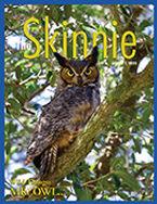 Skinnie_cover_1816.jpg
