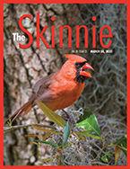 Skinnie_cover_1905.jpg