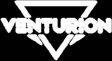 Copy of 07-artesfinais-brand-venturion_n