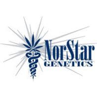 Norstar Genetic Seeds