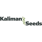 kaliman-seeds_177.png