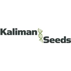 Kaliman Seeds Promotion