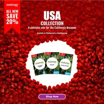 Screenshot_2020-11-11 Cannabis Seeds for