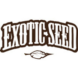 Exotic Seeds Promotion