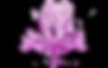 favoriteseed logo 3