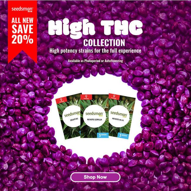 Screenshot_2020-11-18 Cannabis Seeds for