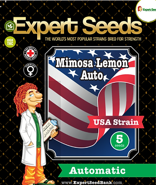 Mimosa Lemon Auto Feminised Seeds from Expert Seeds