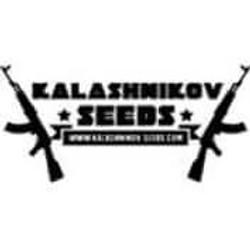 Kalashnikov Seeds Promotion