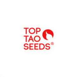 Top Tao Promotion