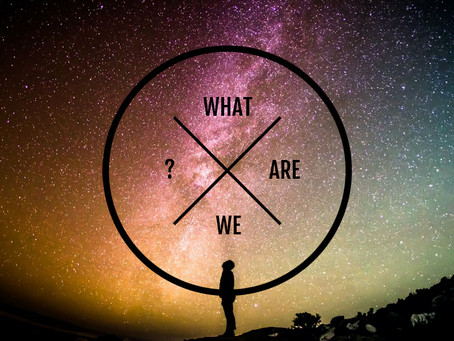 What are we to the Universe?