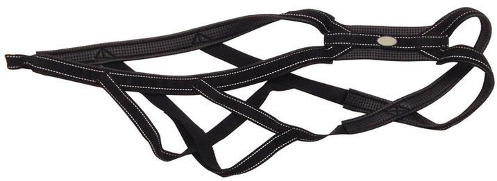 Mushing harness