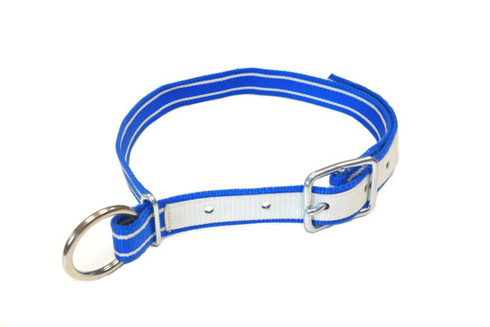Cow collar  Nylon blue