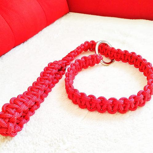 Coleira de corda artesanal